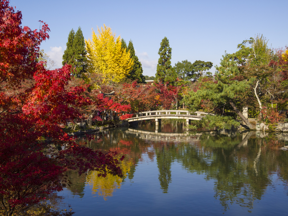 Trees with changed color leaves around a lake ith a bridge
