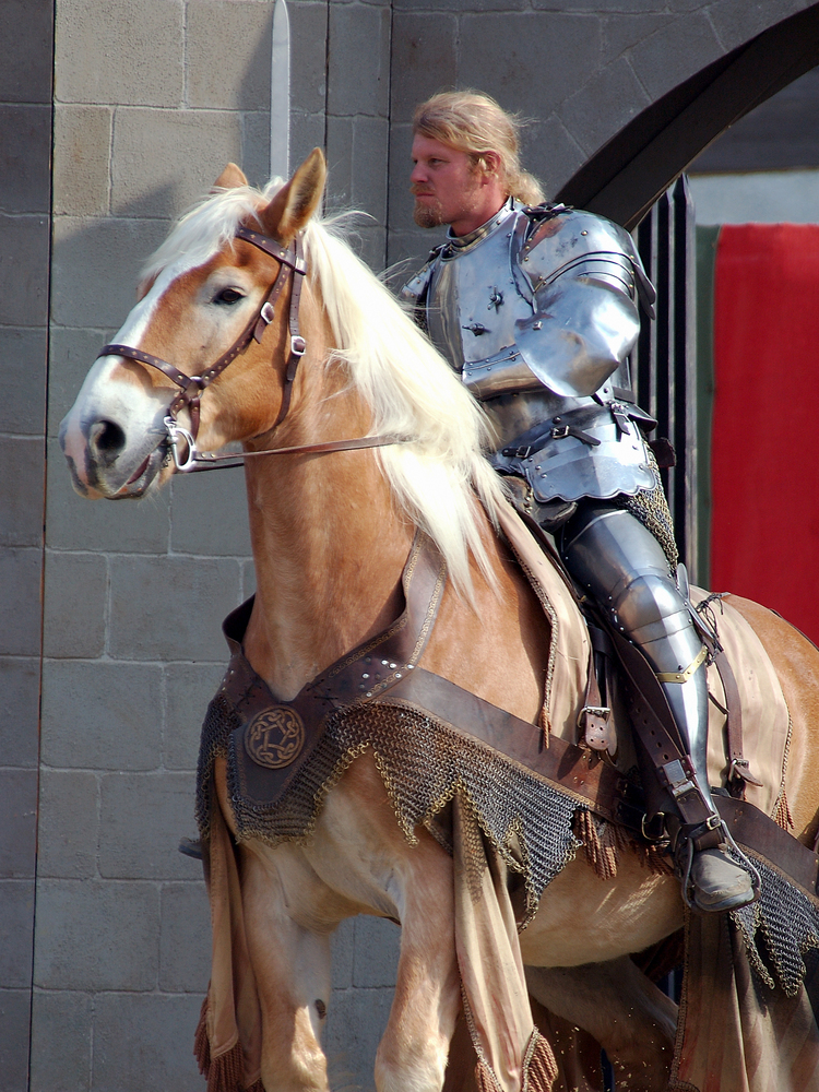 Medieval Time - knight riding a horse