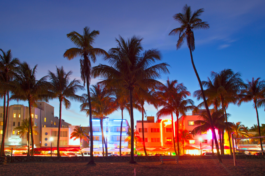 Coast of Miami with palm trees and light up buildings