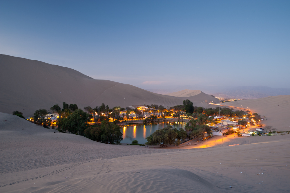 Image of a town surrounding a desert oasis.