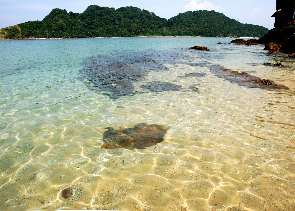 Image of the Gem Island Beach in Malaysia