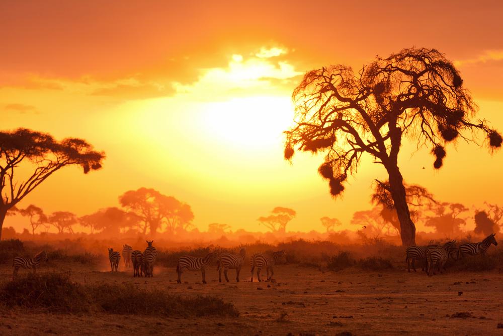 Sunset views in Masai Mara, Kenya