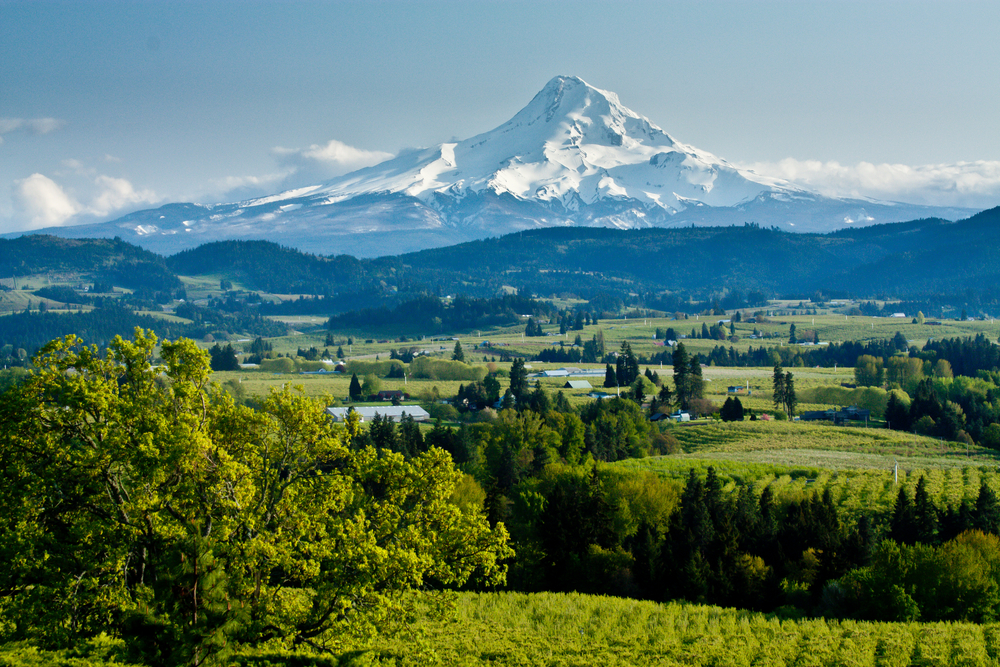 Views of Mount Hood