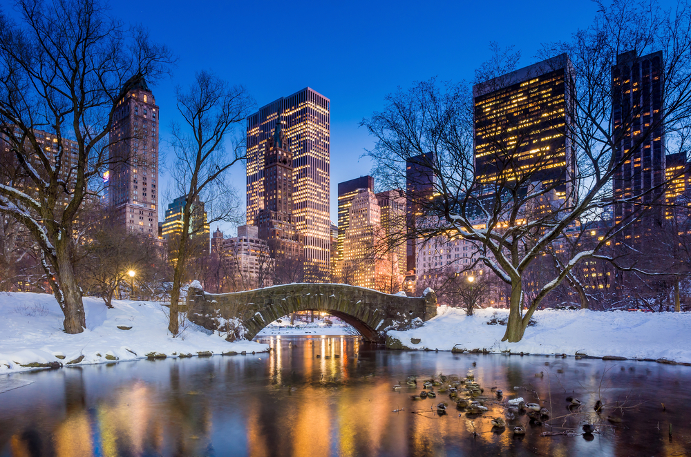 Central Park in winters