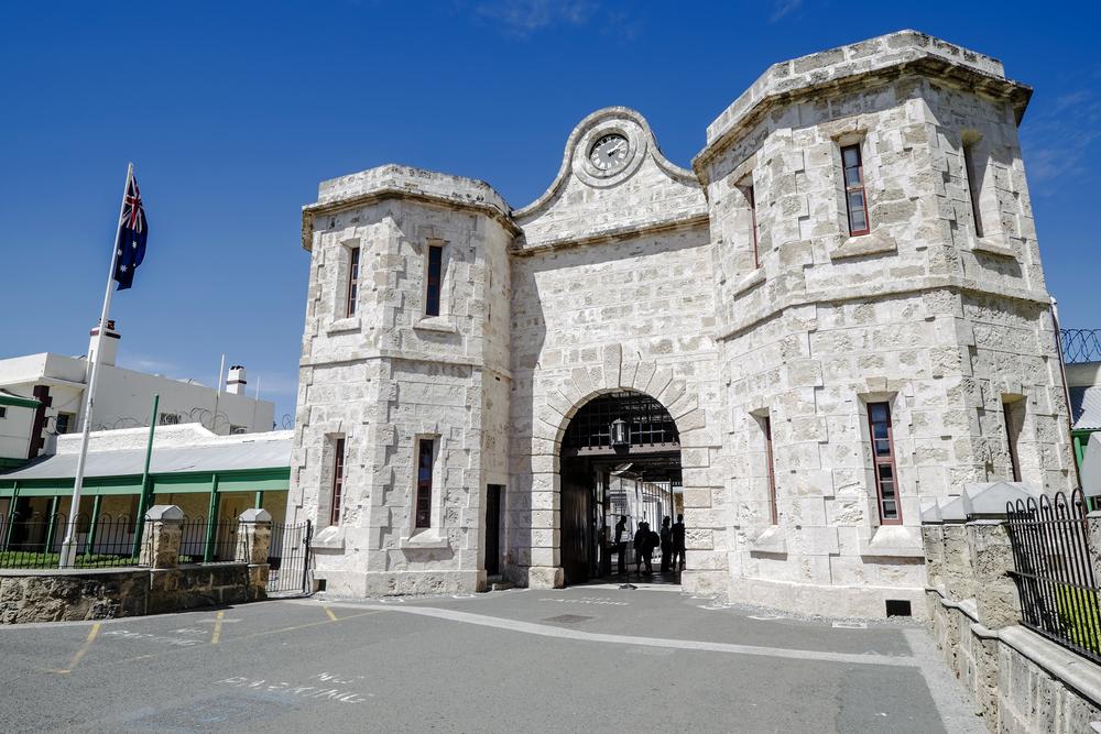 Old Gaul, Western Australia Museum
