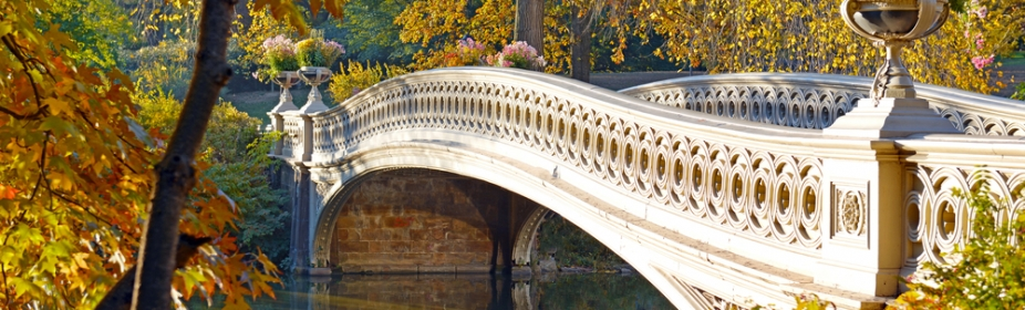 Bow Bridge in Fall