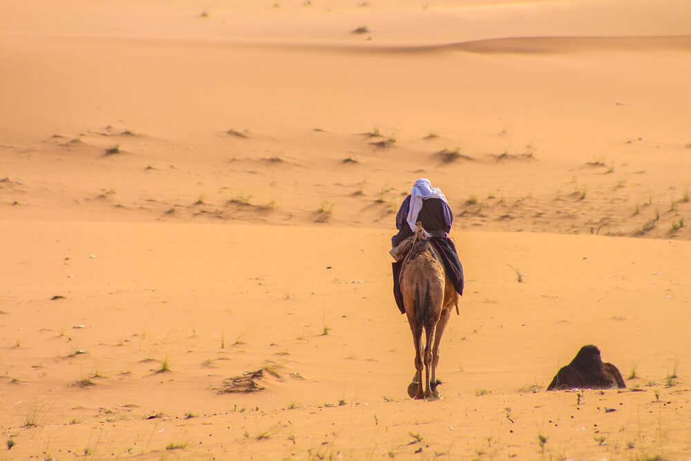 Man riding camel through the desert