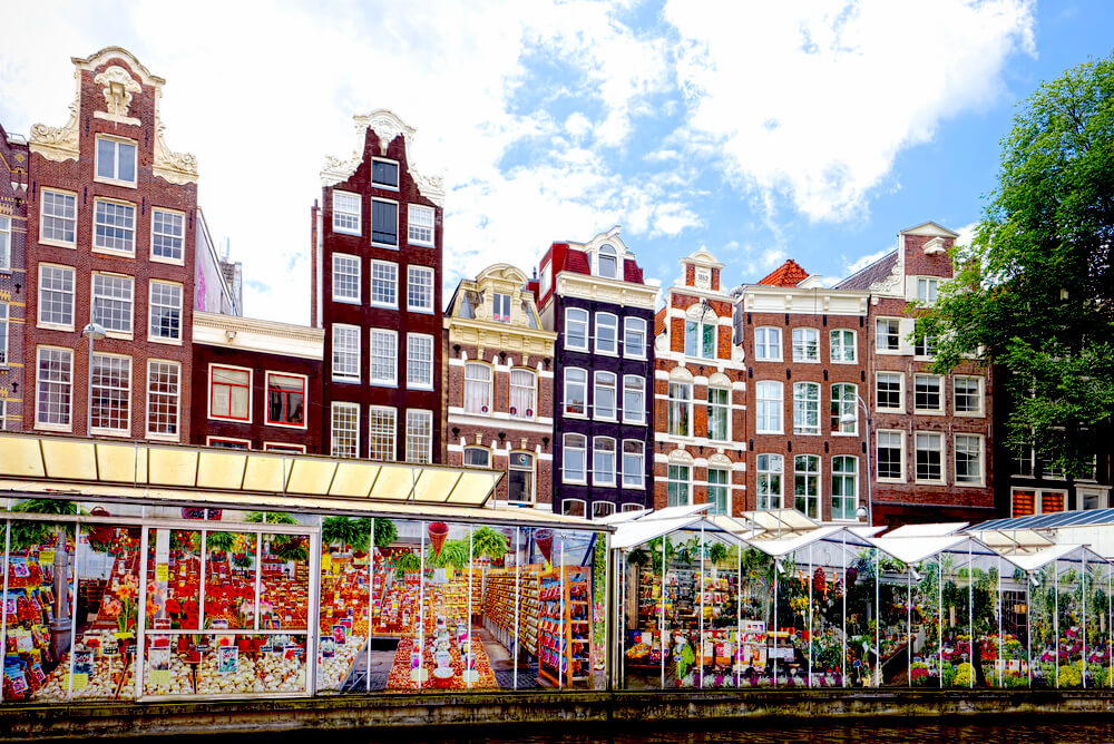 Amsterdam's floating flower market