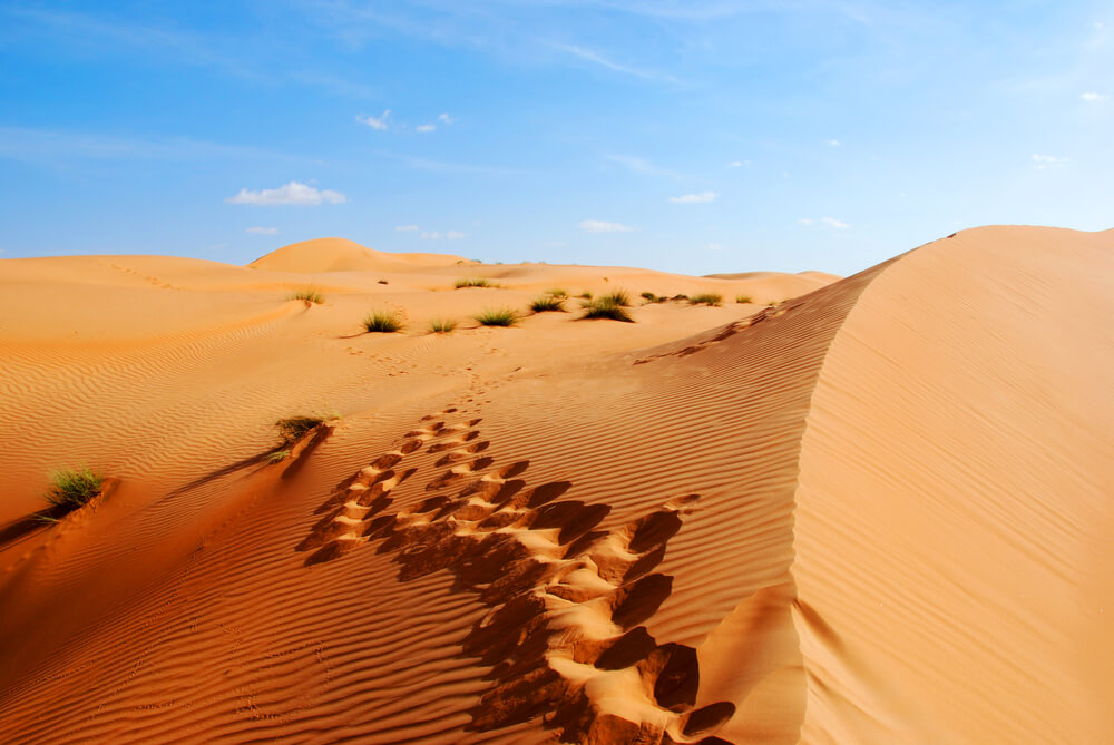 Dunes of the Rub al Khali or Empty Quarter. Straddling Oman, Saudi Arabia, the UAE and Yemen.