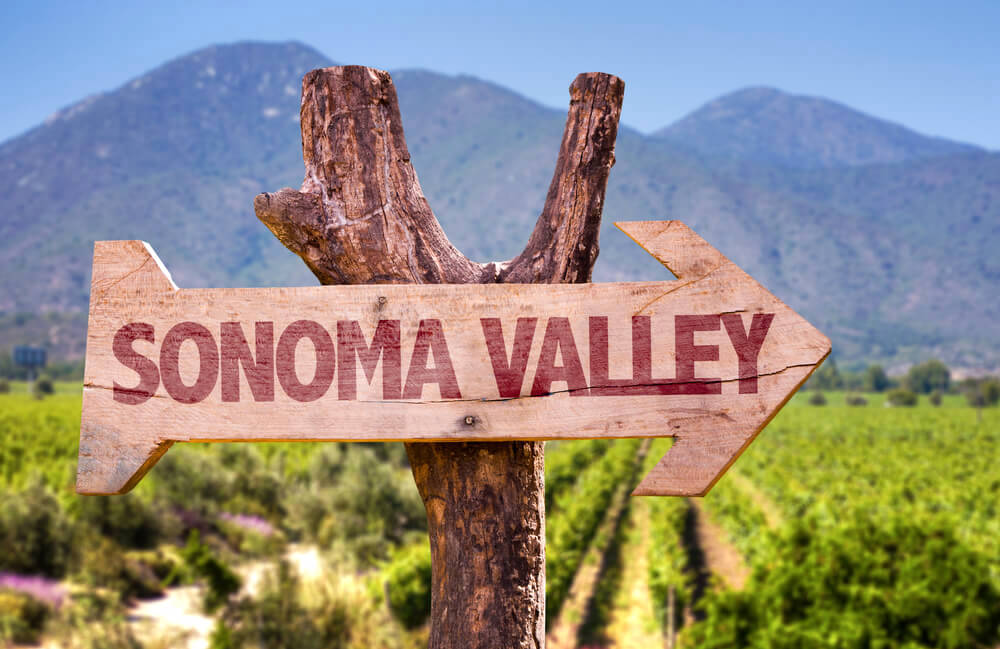 Wooden sign of Sonoma Valley against a vineyard background